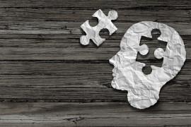 La memoria e il sogno della conoscenza