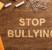 Prevenzione e contrasto di bullismo e cyberbullismo: un approccio di sistema